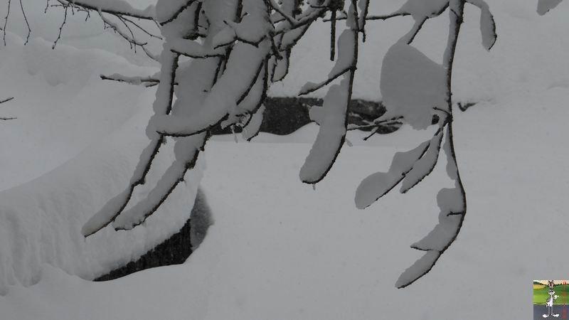 2015-01-31 : Neige à La Mainmorte (39) 2015-01-31_neige_11