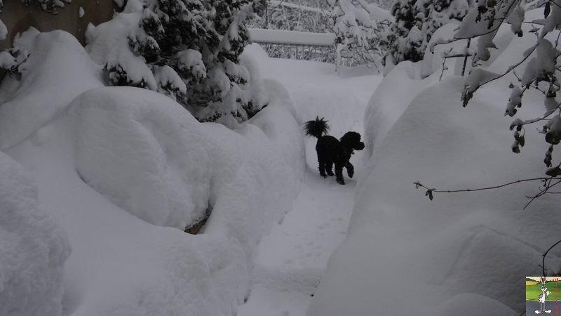 2015-01-31 : Neige à La Mainmorte (39) 2015-01-31_neige_21
