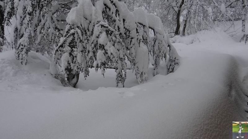 2015-02-01 : Neige, beaucoup de neige, trop de neige à La Mainmorte (39) 2015-02-01_neige_13