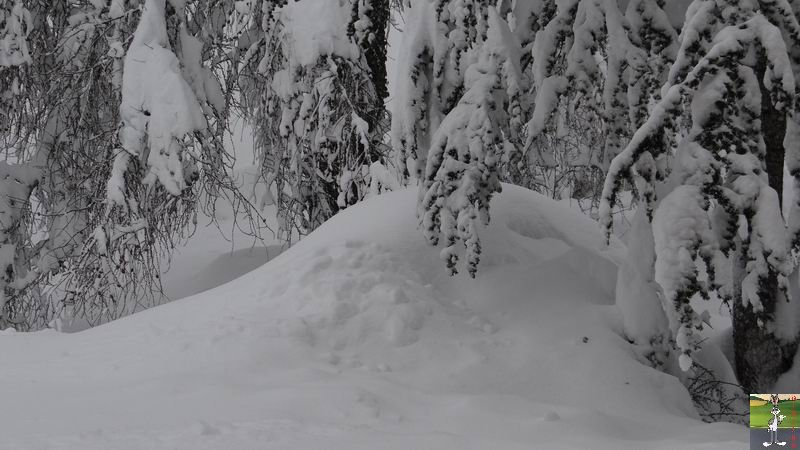 2015-02-01 : Neige, beaucoup de neige, trop de neige à La Mainmorte (39) 2015-02-01_neige_16