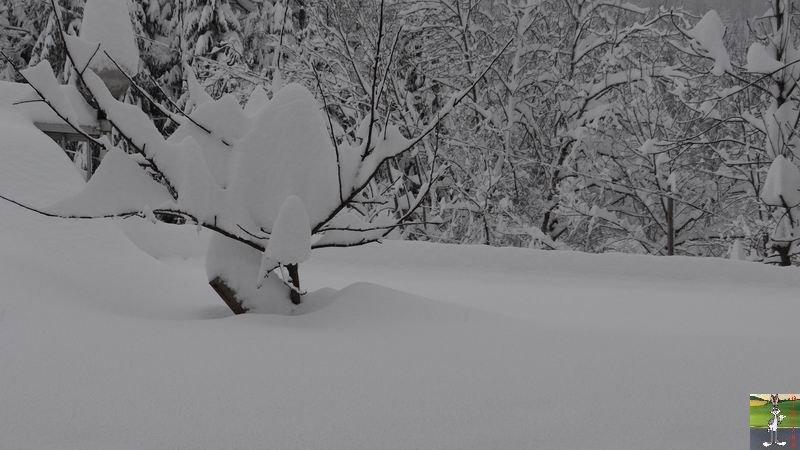 2015-02-01 : Neige, beaucoup de neige, trop de neige à La Mainmorte (39) 2015-02-01_neige_18