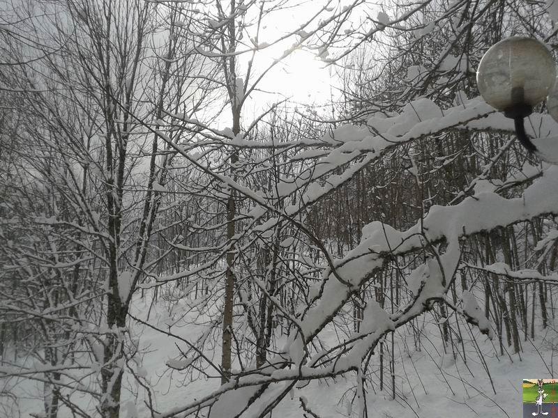 2015-02-06 : Neige et un petit soleil à La Mainmorte (39) 2015-02-06_neige_soleil_04