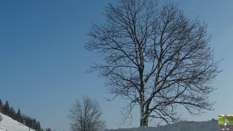 2015-02-07 : Neige et soleil à La Mainmorte (39) 2015-02-07_neige_soleil_08