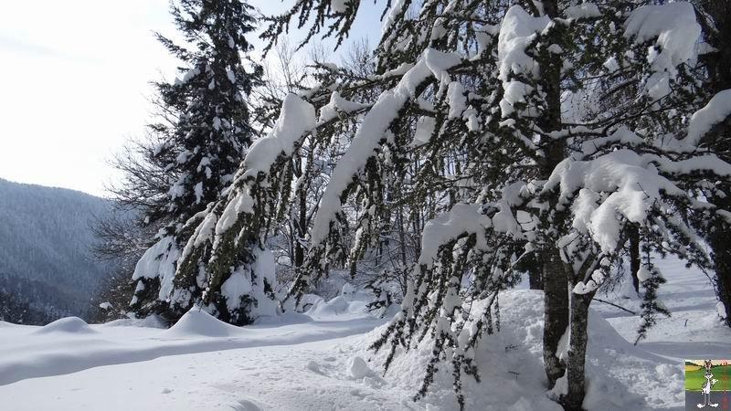 2015-02-07 : Neige et soleil à La Mainmorte (39) 2015-02-07_neige_soleil_19