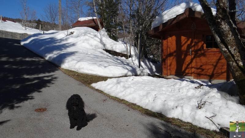 2015-02-20 : Neige et soleil à La Mainmorte (39) 2015-02-20_soleil_03