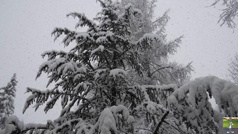 2015-02-21 : Retour de la neige à La Mainmorte (39) 2015-02-21_neige_02