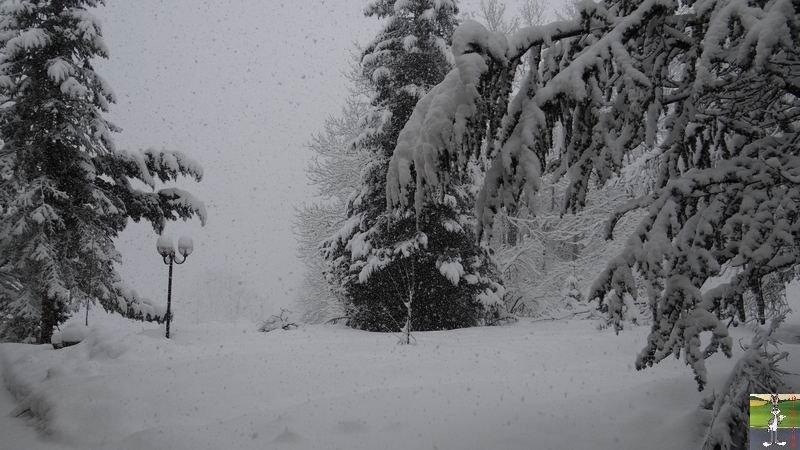 2015-02-21 : Retour de la neige à La Mainmorte (39) 2015-02-21_neige_03