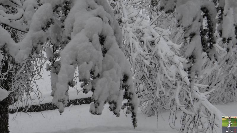 2015-02-21 : Retour de la neige à La Mainmorte (39) 2015-02-21_neige_05