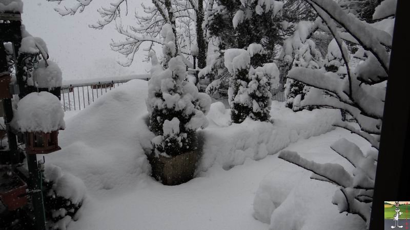 2015-02-21 : Retour de la neige à La Mainmorte (39) 2015-02-21_neige_08