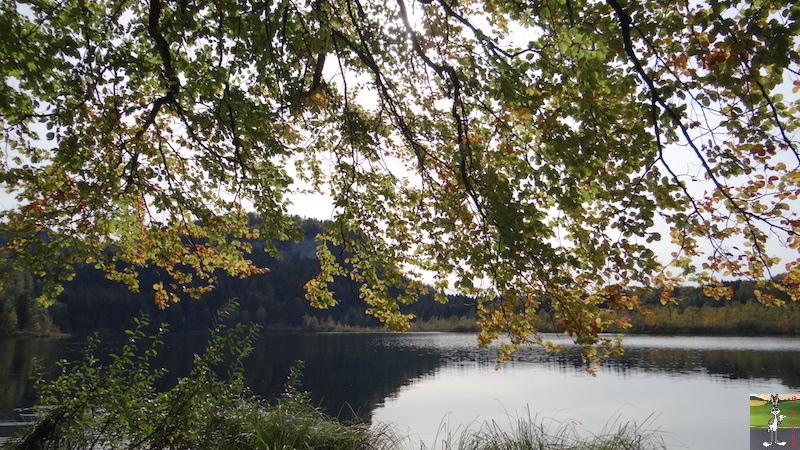 2015-10-04 : Balade au Lac de Bonlieu (39) 2015-10-04_lac_bonlieu_13
