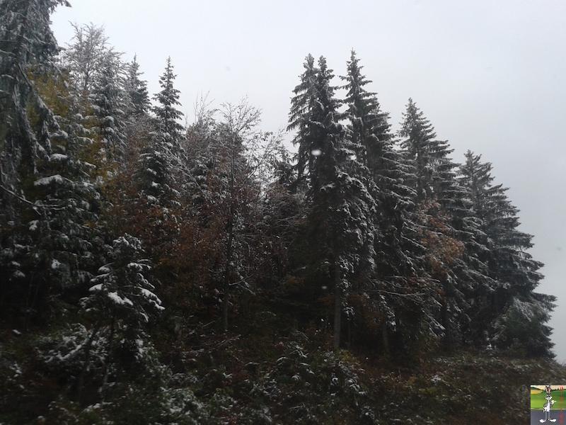 2015-10-16 : Première neige dans la foret de Haut-Cret (39) 2015-10-16_premiere_neige_01