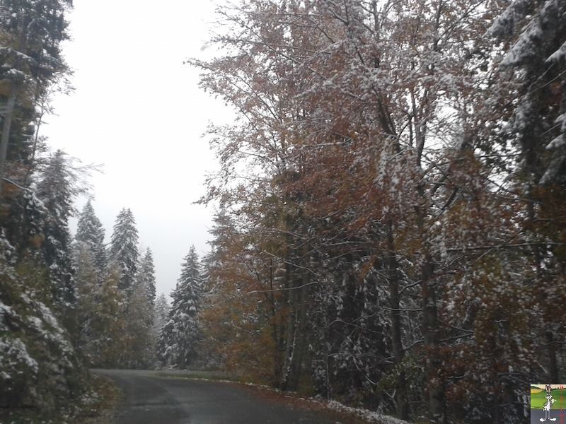 2015-10-16 : Première neige dans la foret de Haut-Cret (39) 2015-10-16_premiere_neige_02