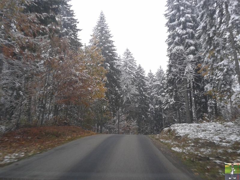 2015-10-16 : Première neige dans la foret de Haut-Cret (39) 2015-10-16_premiere_neige_05
