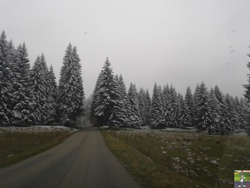 2015-10-16 : Première neige dans la foret de Haut-Cret (39) 2015-10-16_premiere_neige_07