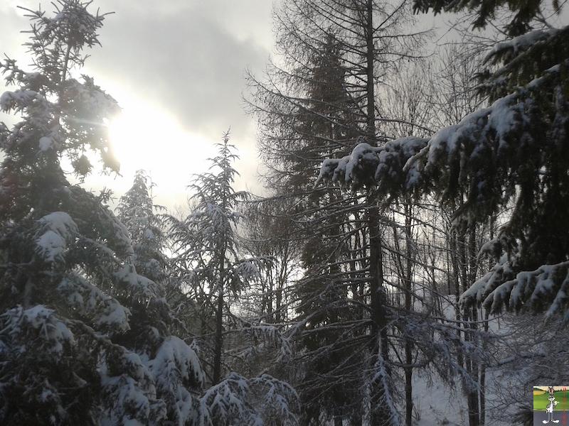 2016-01-15 : Neige à La Mainmorte (39) 2016-01-15_neige_04