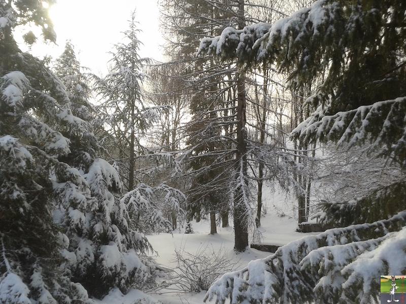 2016-01-15 : Neige à La Mainmorte (39) 2016-01-15_neige_05