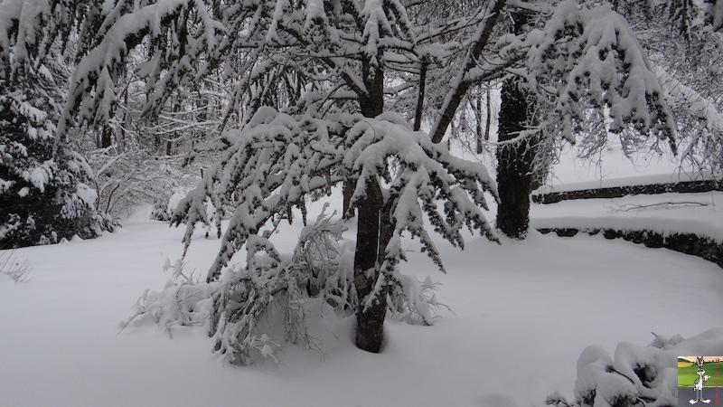 2016-01-16 : Neige à La Mainmorte (39) 2016-01-16_neige_01