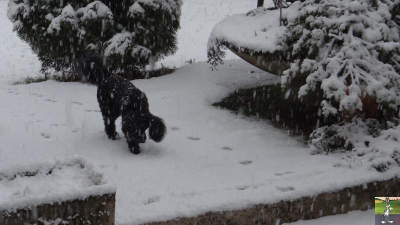 2016-02-07 : Neige à La Mainmorte (39) 2016-02-07_neige_07