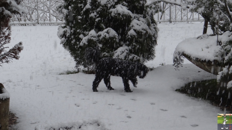 2016-02-07 : Neige à La Mainmorte (39) 2016-02-07_neige_08