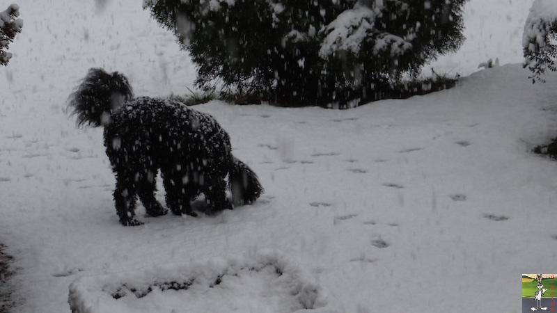 2016-02-07 : Neige à La Mainmorte (39) 2016-02-07_neige_10