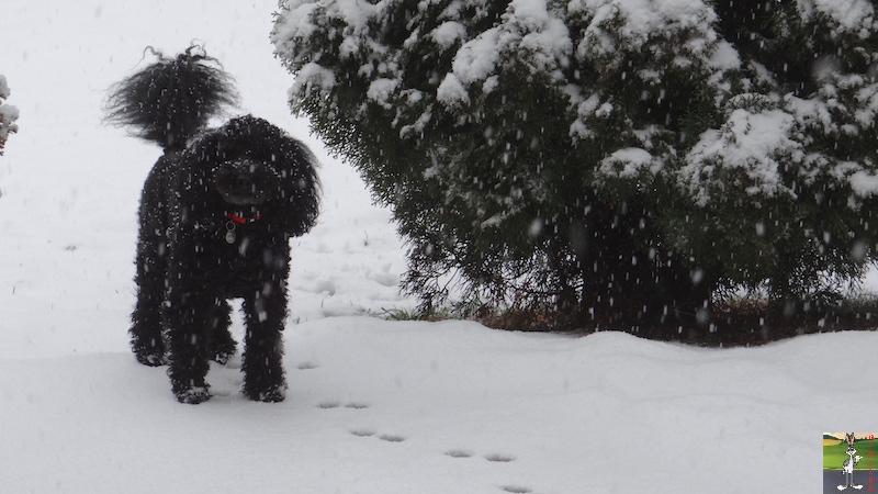2016-02-14 : Neige à La Mainmorte (39) 2016-02-14_neige_09