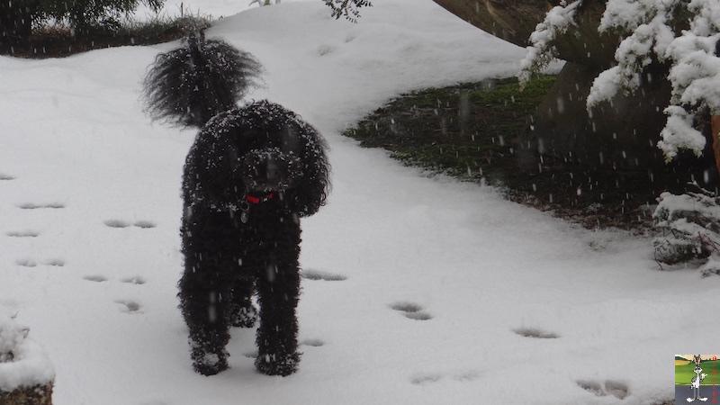 2016-02-14 : Neige à La Mainmorte (39) 2016-02-14_neige_10