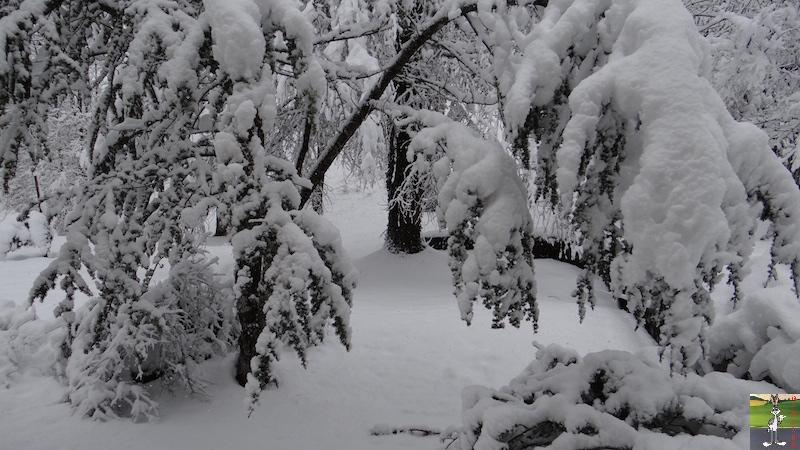 2016-03-05 : Neige à La Mainmorte (39) 2016-03-05_neige_01