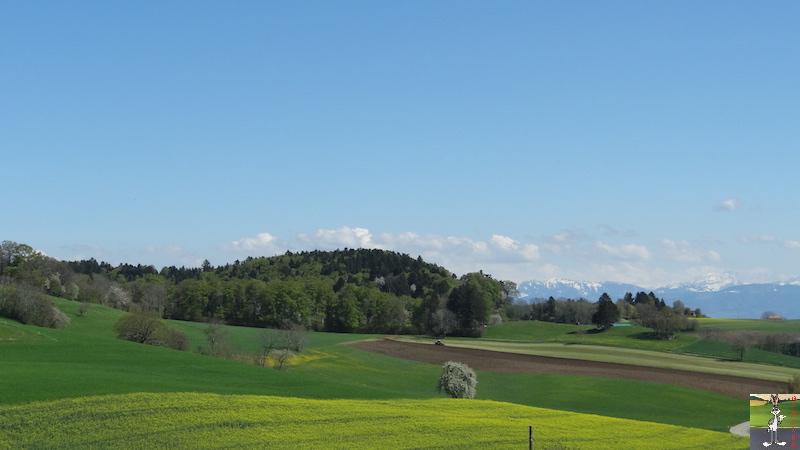 2016-04-29 : Le printemps en Suisse (VD) 2016-04-29_printemps_suisse_03