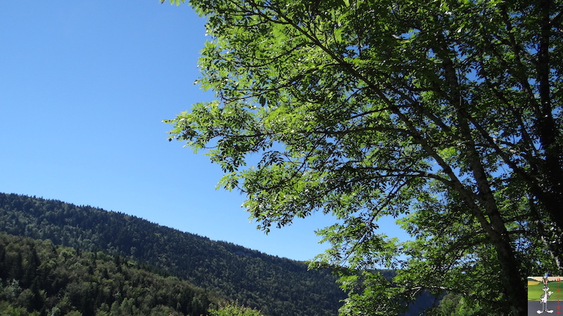 2016-07-17 : Ciel bleu, soleil et Fylou à La Mainmorte (39) 2016-07-17_ciel_bleu_soleil_fylou_01
