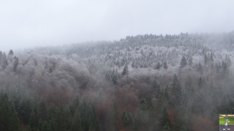 2016-11-06 : Première neige à La Mainmorte (39) 2016-11-06_neige_05