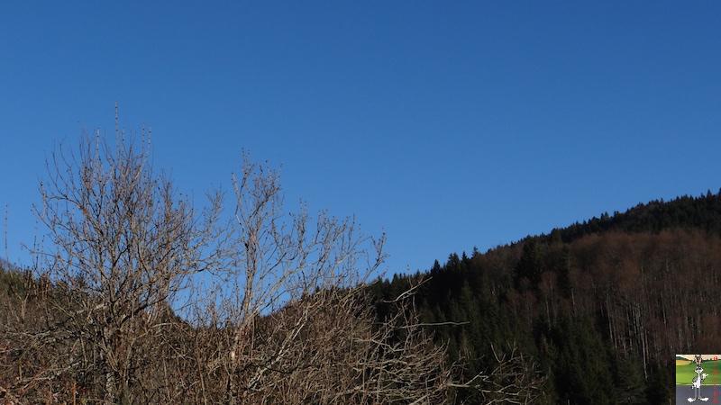 2017-01-01 : Soleil et ciel bleu à La Mainmorte (39) 2017-01-01_soleil_ciel_bleu_06