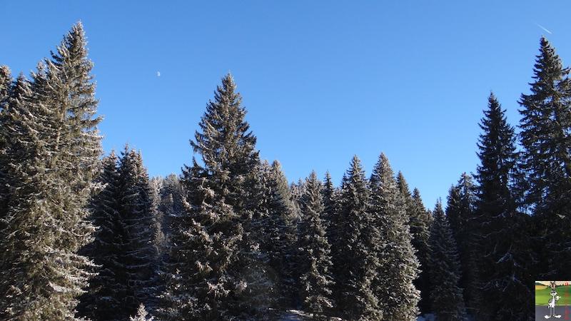 2017-01-06 : Soleil, neige et ciel bleu dans le Haut-Jura (39) 2017-01-06_soleil_neige_13