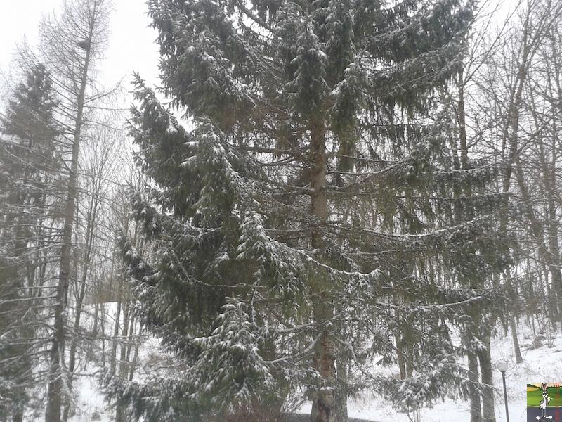 2017-01-13 : Neige à La Mainmorte (39) 2017-01-13_neige_03