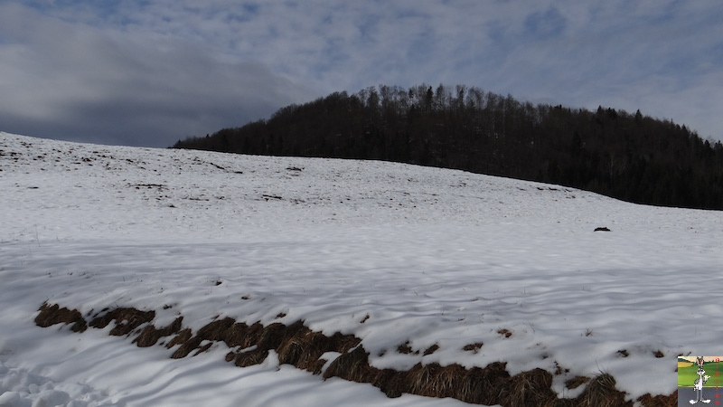 2017-02-12 : Neige et soleil à La Mainmorte (39) 2017-02-12_neige_soleil_01