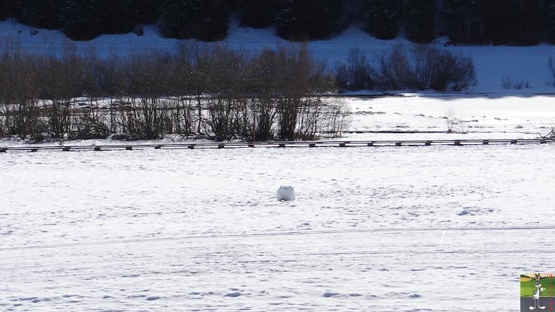 2017-02-25 : Balade dans le Haut-Jura (39) 2017-02-25_HJ_19