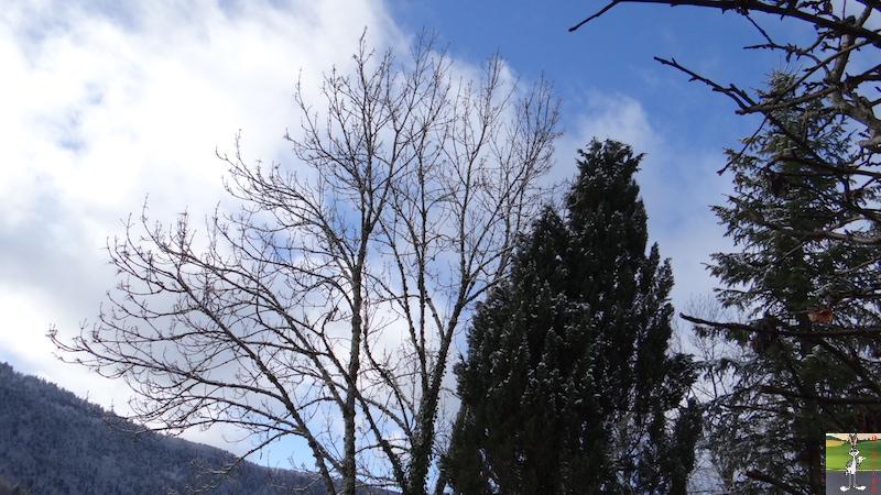 2017-03-05 : Poudrée de neige à La Mainmorte (39) 2017-03-05_poudree_neige_07