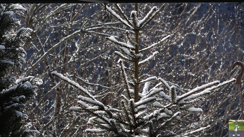 2017-03-05 : Poudrée de neige à La Mainmorte (39) 2017-03-05_poudree_neige_09