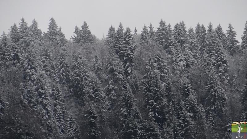 2017-11-10 : Première neige à La Mainmorte (39) 2017-11-10_premiere_neige_01