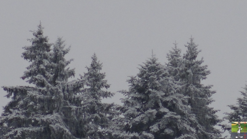 2017-11-10 : Première neige à La Mainmorte (39) 2017-11-10_premiere_neige_02
