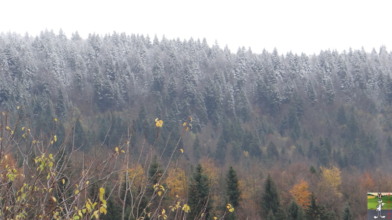 2017-11-10 : Première neige à La Mainmorte (39) 2017-11-10_premiere_neige_03