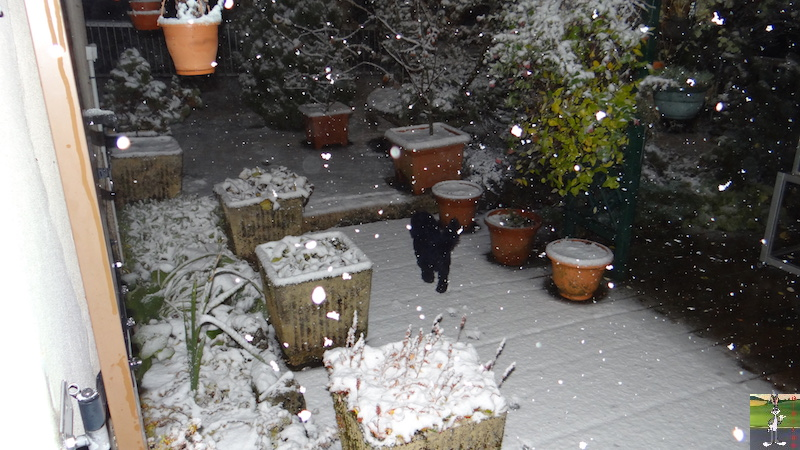 2017-11-12 : La neige est bien arrivée à La Mainmorte (39) 2017-11-12_neige_12
