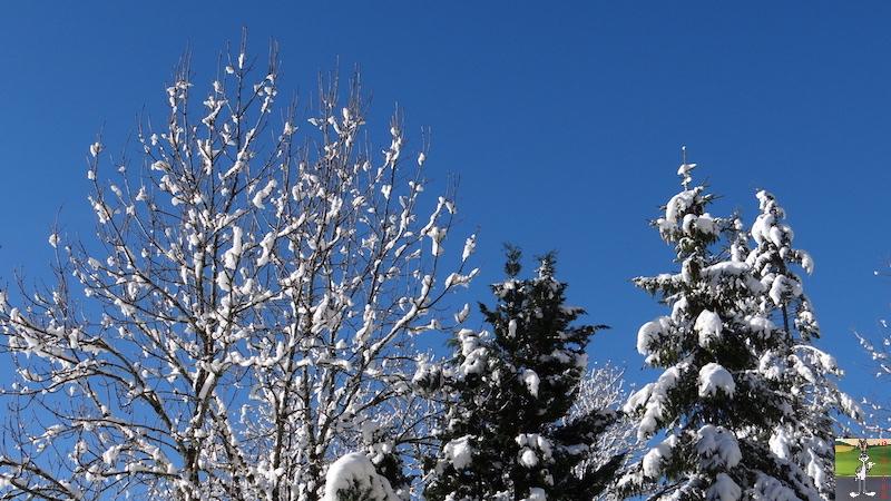 2017-11-14 : Neige et soleil à La Mainmorte (39) 2017-11-14_neige_08
