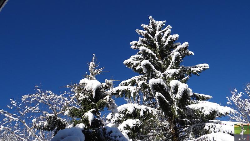 2017-11-14 : Neige et soleil à La Mainmorte (39) 2017-11-14_neige_09