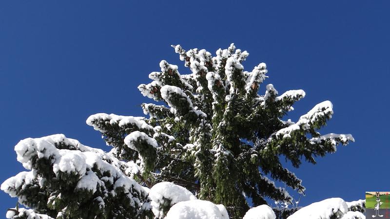 2017-11-14 : Neige et soleil à La Mainmorte (39) 2017-11-14_neige_13