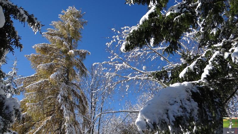 2017-11-14 : Neige et soleil à La Mainmorte (39) 2017-11-14_neige_23