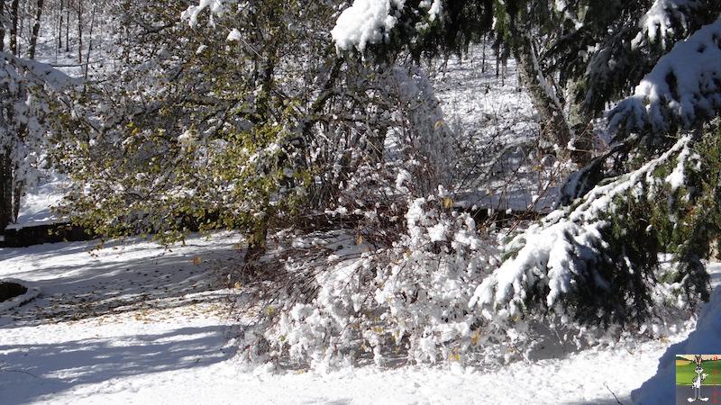 2017-11-14 : Neige et soleil à La Mainmorte (39) 2017-11-14_neige_24