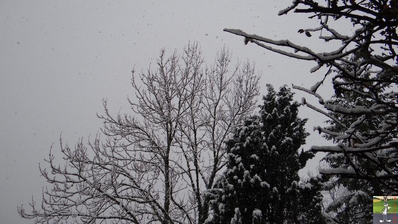 2017-11-25 : Nouvelle chute de neige à La Mainmorte (39) 2017-11-25_Neige_02