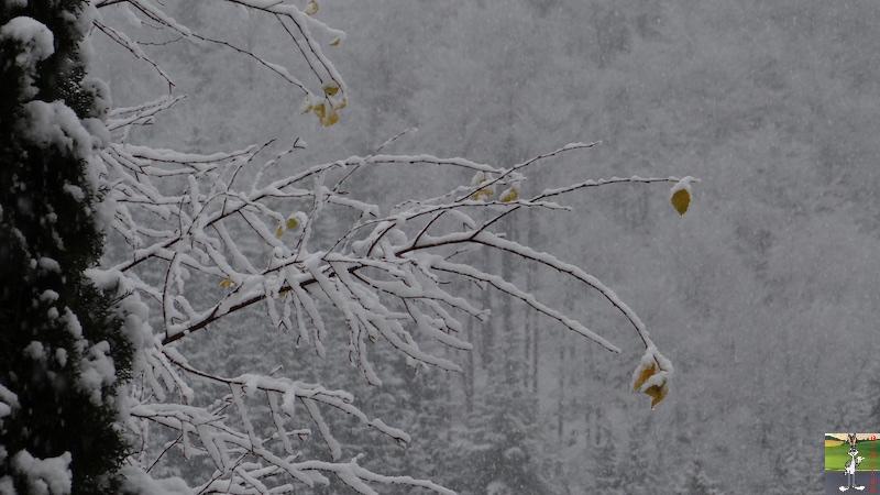 2017-11-25 : Nouvelle chute de neige à La Mainmorte (39) 2017-11-25_Neige_04