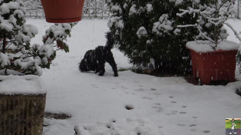 2017-11-25 : Nouvelle chute de neige à La Mainmorte (39) 2017-11-25_Neige_08