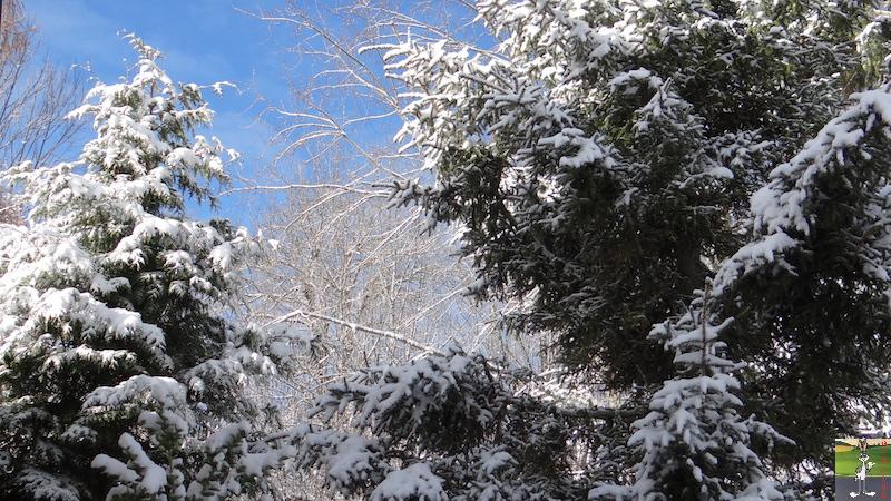 2017-11-26 : Neige et soleil à La Mainmorte (39) 2017-11-26_Neige_Soleil_02